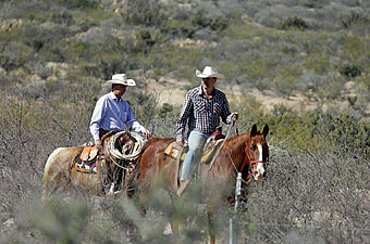 Apache Spirit Ranch, Arizona - Credit: Apache Spirit Ranch