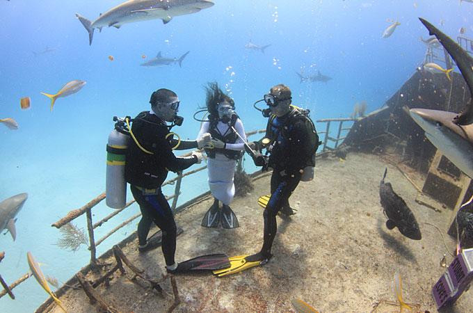Heiraten Amp Honeymoon Auf Den Bahamas ARGUS REISEN