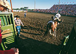 Mandan Rodeo Days, North Dakota - Credit: North Dakota Tourism