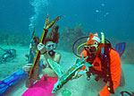 Underwater Music Festival, Lower Keys, Florida - Credit: © by The Florida Keys & Key West