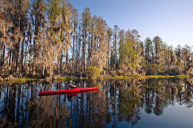 Okefenokee Swamp, Georgia - Credit: Georgia Department of Economic Development, Ralph Daniel Photography, Inc.