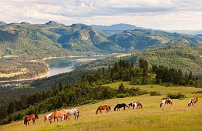 WA/Bull Hill Guest Ranch/Landschaft