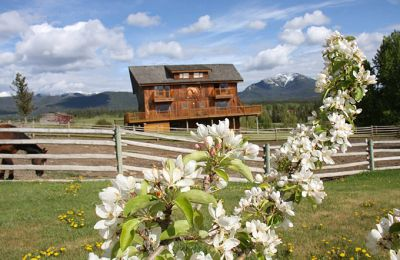 BC/Echo Valley Guest Ranch/Blume vor Lodge