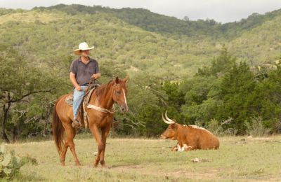 TX/Dixie Dude Ranch/Reiter mit Longhorn