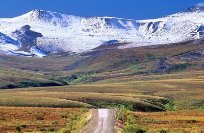 NWT/ Dempster Highway