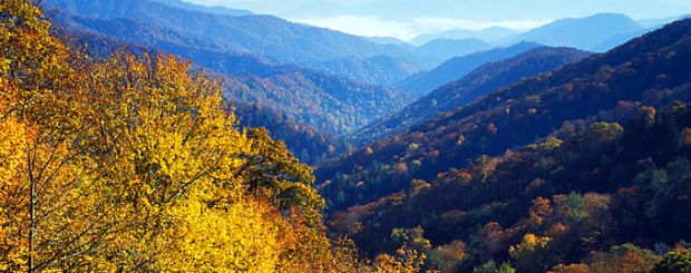 Newfound Gap, Great Smoky Mountains National Park, North Carolina - Credit: VisitNC.com, Bill Russ