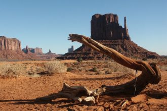UT/Monument Valley/Holz 680