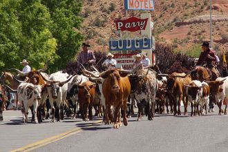 UT/Kanab/Cattle Drive Parade