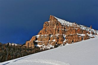 WY/Jackson/National Forest Snowmobile Tour - Togwotee High Mountain/ Berg